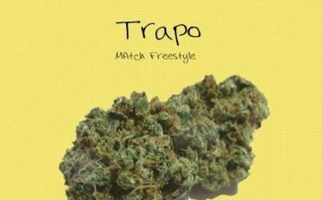 trapo1-360x224